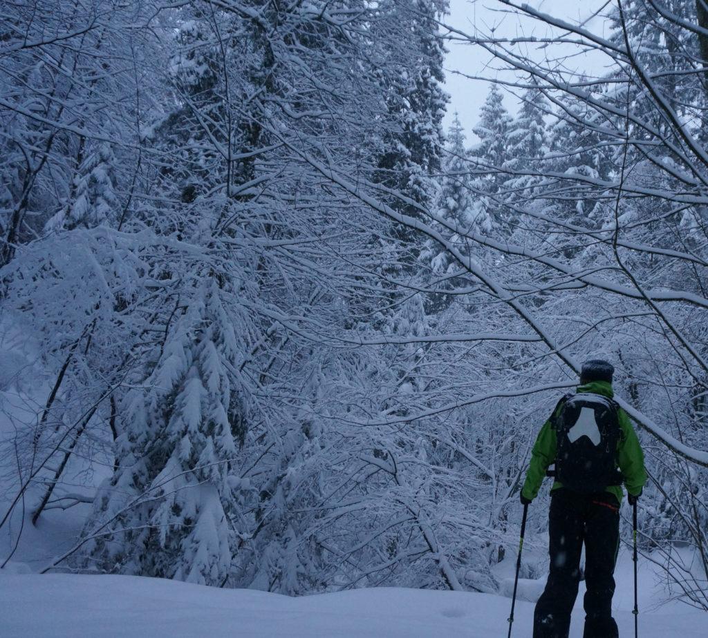 Advenate Lawinenrucksack Schnee